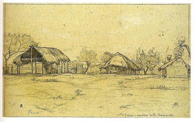 Auguste Morisot, Notre case et ranchos de La Mariquita