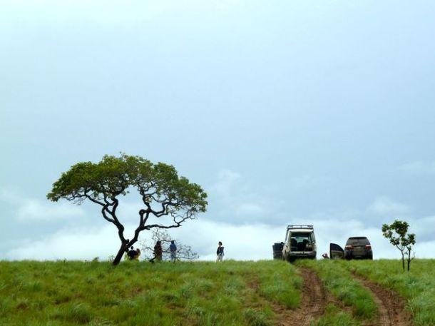 Expédition dans les Llanos