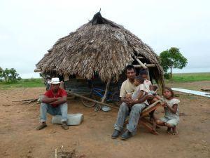 Famille de Capuruchanos