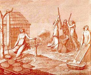 L'élaboration du casabe (gravure du 18e siècle)