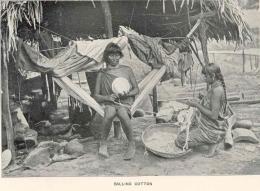 Waiomgomos faisant des balles de coton