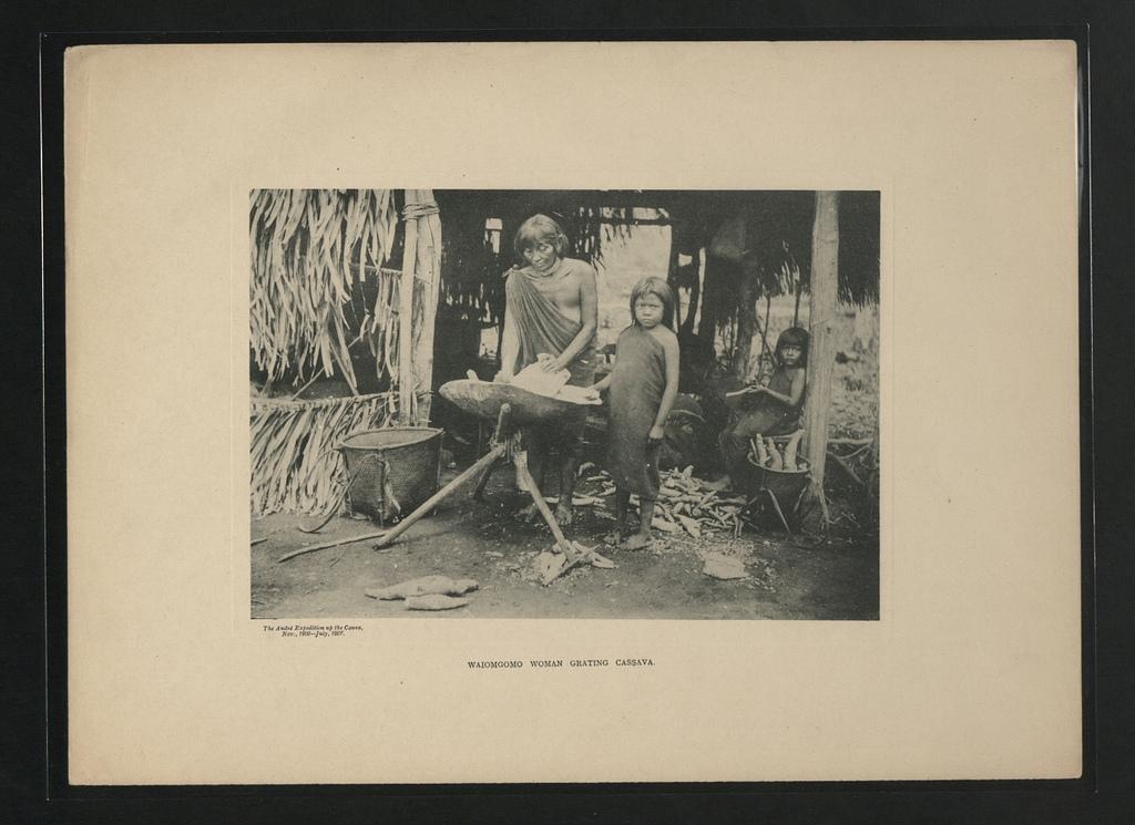 Femme Waiomgomo grattant le casabe