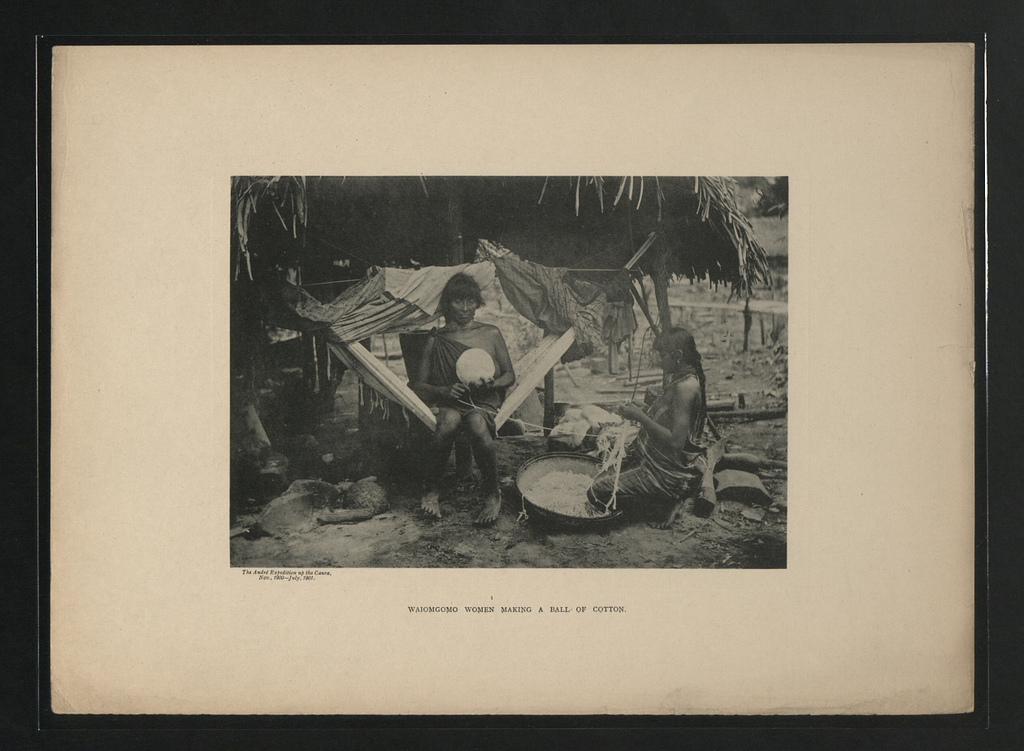 Femmes Waiomgomo faisant une balle de coton