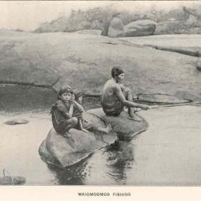 Eugène André au pays desWaiomgomos